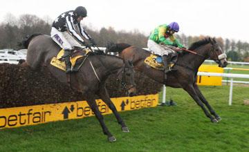horses hurdle 2.jpg
