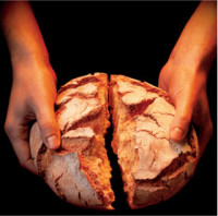 aposta-solidaria-sjtalha-alimentos