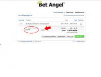 apply-coupon-code-betangel-02.jpg