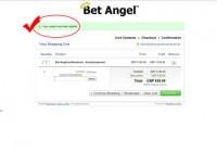apply-coupon-code-betangel-03.jpg